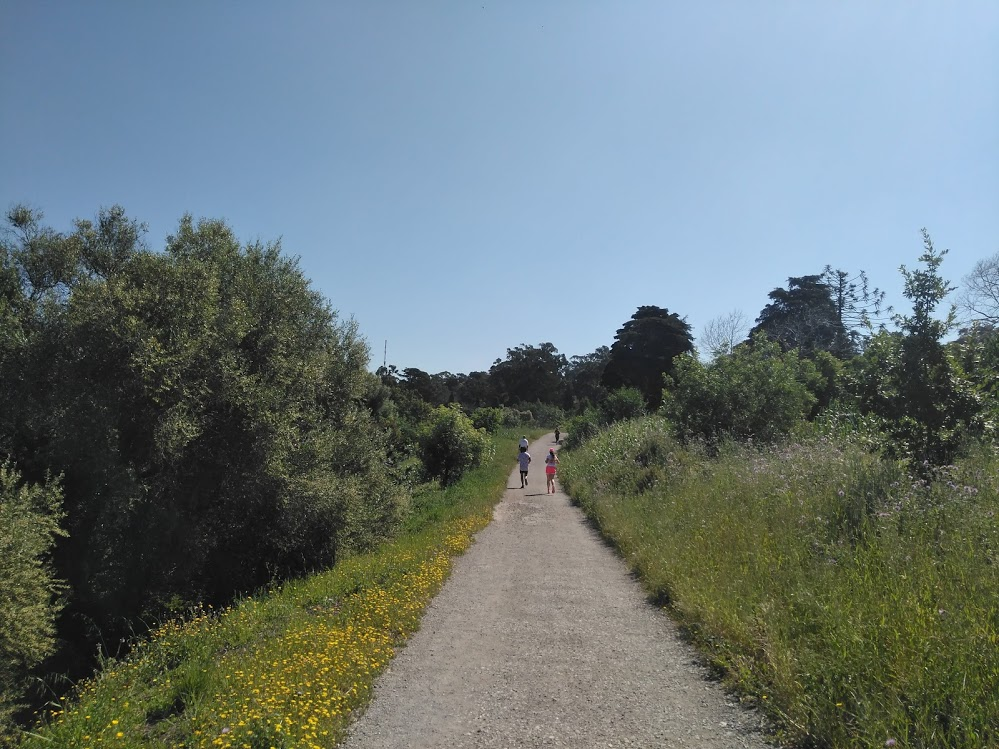 trail running races in Lisbon