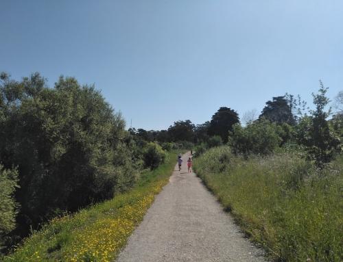 Oeiras Trail – trail running races in Lisbon